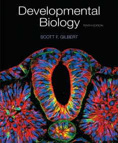developmentalbiology10_1