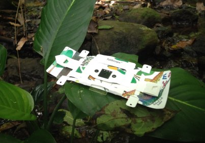 foldscope_rainforest.jpg